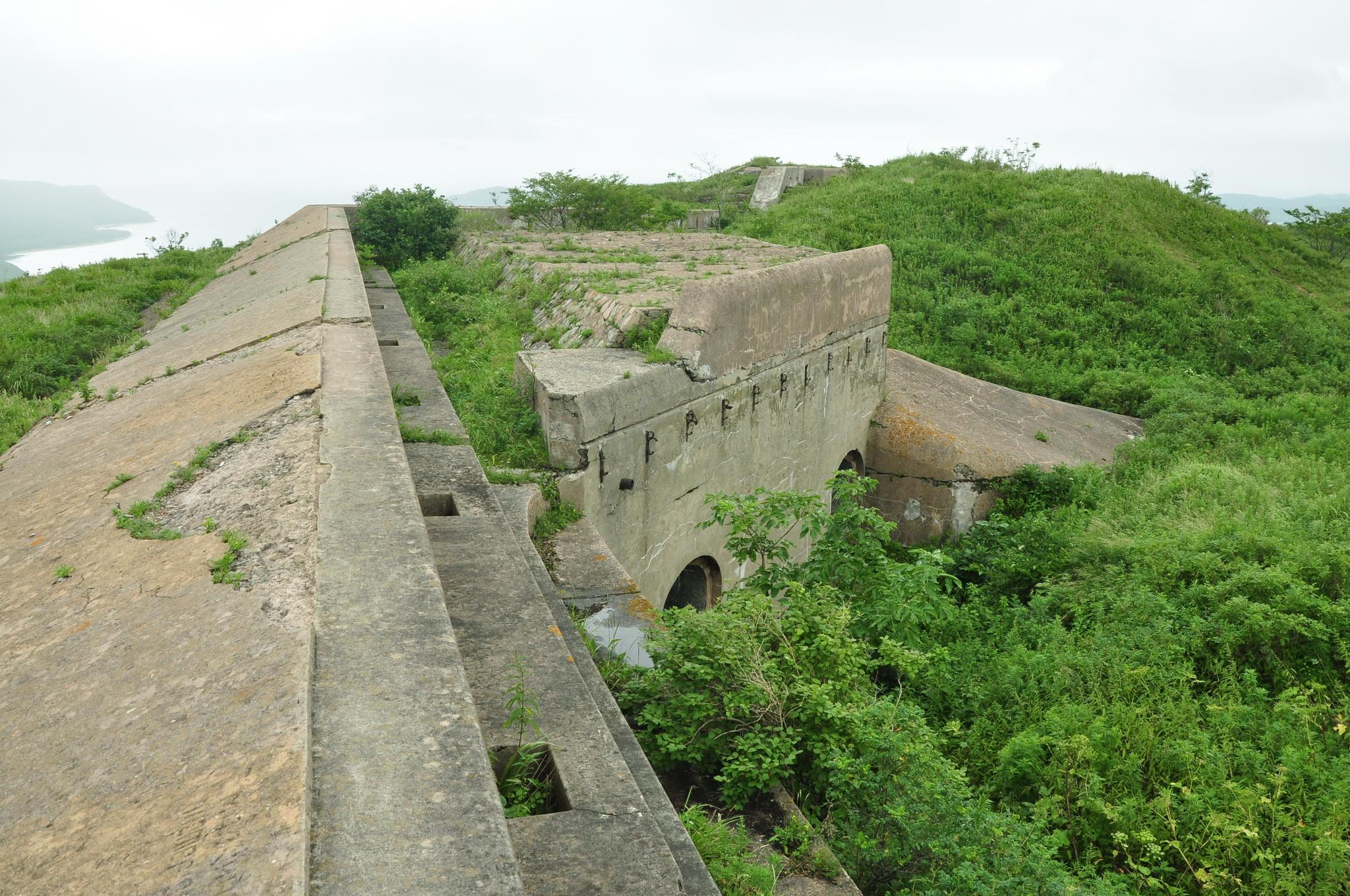 вывеску, владивостокская крепость фото лугах зарослях кустарников